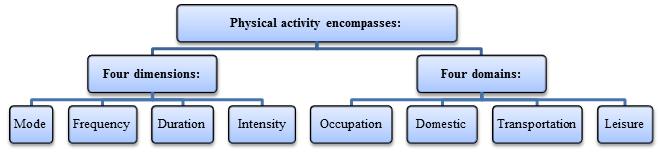 Physical Activity Encompass